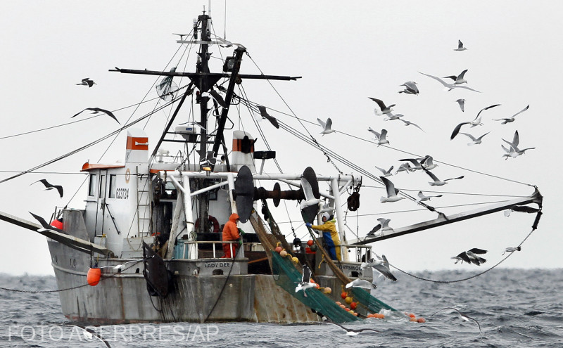 franta-pescuitul-cu-impulsuri-electrice-interzis
