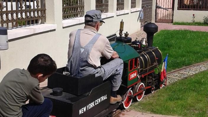 videofoto-cu-trenul-prin-curte