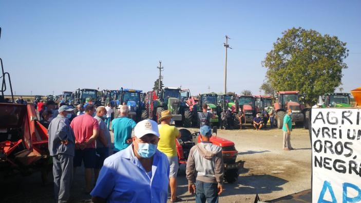 protest-al-fermierilor-din-judetul-constanta