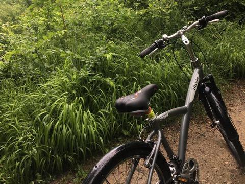 va-fi-extins-proiectul-de-transport-al-bicicletelor-in-poiana-braov