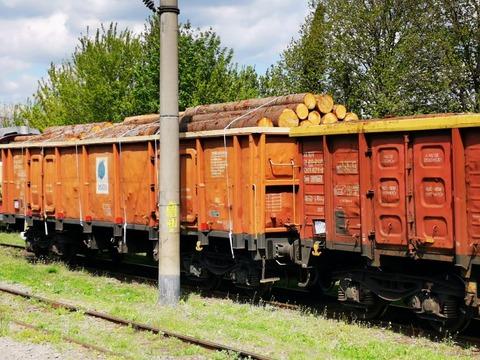 27-de-vagoane-pline-cu-lemne-aduse-din-cehia-au-fost-confiscate-de-garda-forestiera-braov