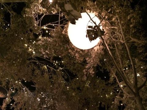 luminie-de-craciun-i-brazi-in-cartiere-din-2021-anul-acesta-nu-a-mai-fost-timp